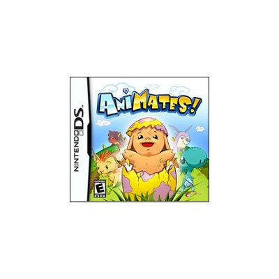 Dreamcatcher AniMates