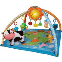 VTech Lil' Critters Discover and Learn Gym