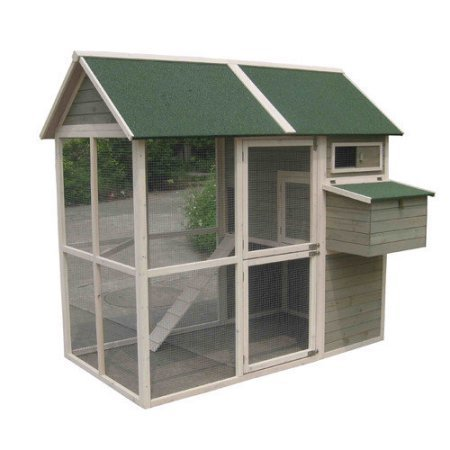 Innovation Pet Coops and Feathers Walk-in Chicken Coop