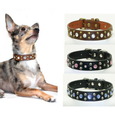 Hip Doggie Stone Cowboy Dog Collar