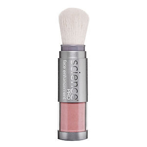 Colorescience Blush Brush Kiss the Sky