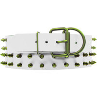 Platinum Pets Genuine White Leather Dog Collar with Spikes