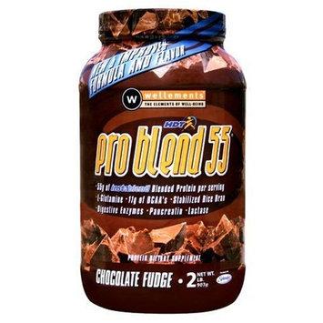Wellements Pro Blend 55, Chocolate Fudge, 2.2 lbs.