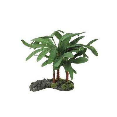 R-Zilla SRZ100009613 Lady Palm Plant
