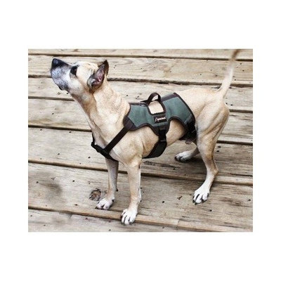 ABO Gear 50 to 80-Pound Dog Harness, Large, 28 to 36-Inch Girth