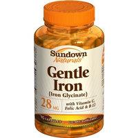 Sundown Naturals Gentle Iron (Iron Glycinate), 28 mg, 90 Capsules