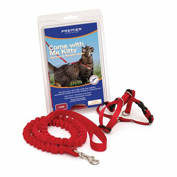 Premier Cat Harness and Bungee Leash