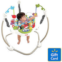 Fisher-Price Discover N' Grow Jumperoo, Blue, 1 ea
