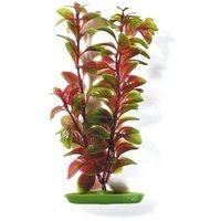 Hagen Marina Aquascaper Red Ludwigia Plant