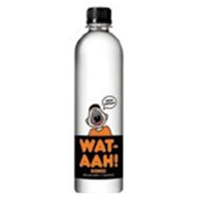 Let Water Be Water Water, Bone and Power, 16.90-Ounce (Pack of 12)
