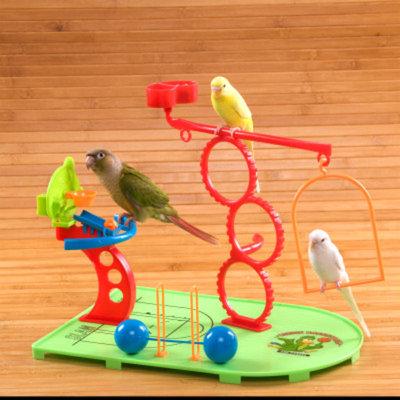 All Living ThingsA Birdie Basketball Gym Bird Toy