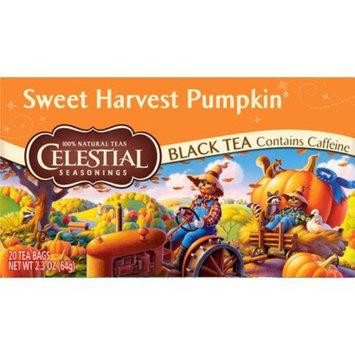 The Hain Celestial Group, Inc. Celestial Seasonings Sweet Harvest Pumpkin Black Tea 20 ct, 6 pk
