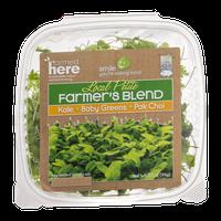 FarmedHere Local Petite Farmer's Blend Kale + Baby Greens + Pak Choi