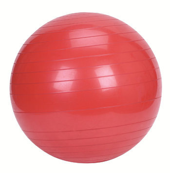 China Sunny Health and Fitness Exercise Ball - 55cm
