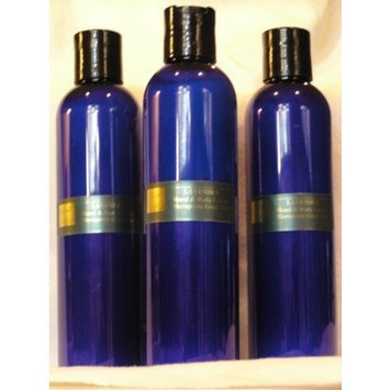 Cyber Scents Bath & Body Works Aromatherapy Lavender Vanilla Body Lotion 6.5 fl oz.