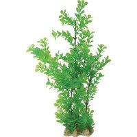 Pure Aquatic Natural Elements Bacopa Aquarium Ornament in Green Size: 17