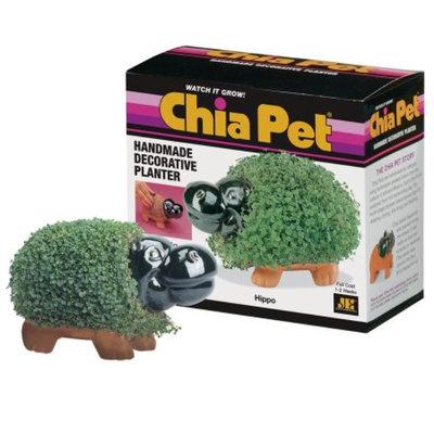 CHIA Pet Hippo