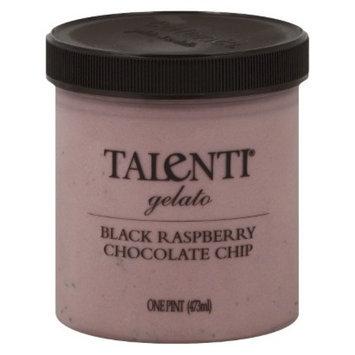 Talenti Raspberry Chocolate Chip Gelato