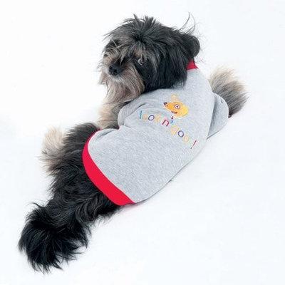 Ethical 'Lookin Good' Dog Sweatshirt - Small