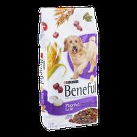 Purina Beneful Dog Food Playful Life