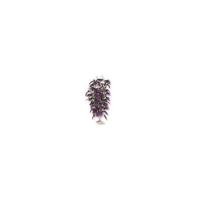 Blue Ribbon Pet Products Aquarium Plant - Amazon Butterfly Leaf With Buds Deep Plum 9-10 Inch