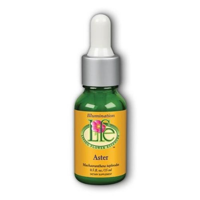 Aster Living Flower 0.5 oz Liquid