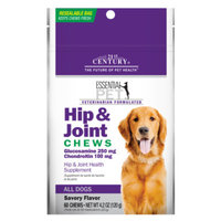 21st Century Hip & Joint Dog Chew