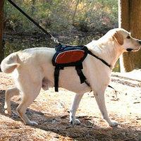 Kurgo Tru-Fit Smart Harness Medium