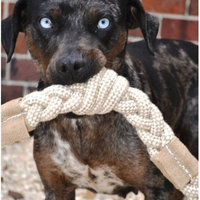 ABO Gear Aussie Naturals Dog Toy 12 In. Jutey Cotton