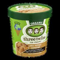 Three Twins Ice Cream Organic Sea Salted Caramel