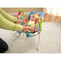 Fisher-Price Discover 'n Grow Activity Bouncer