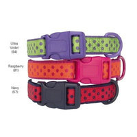 Zack And Zoey Brite Polka Dot Dog Collar Size-See Chart Below: 0.63