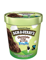 Ben & Jerry's® Chocolate Fudge Brownie Froyo
