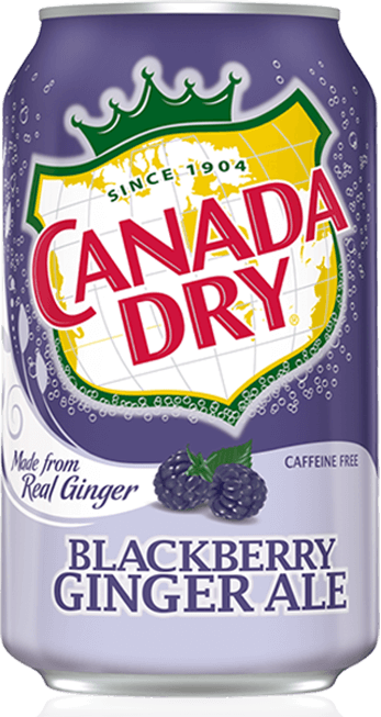 Canada Dry Blackberry Ginger Ale Reviews 2019