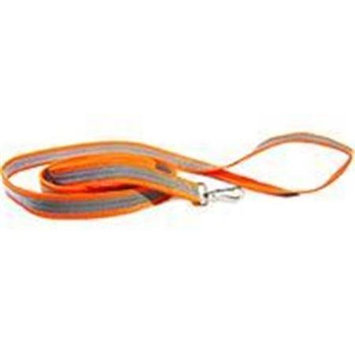 Dog Not Gone-Reflective Leash- Orange LEASH