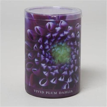 RGP 36641 Candle 15 Oz Glass Jar Pack Of 6