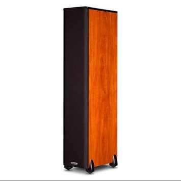 Polk Audio TSi300 3-Way Tower Speaker with Two 5-1/4