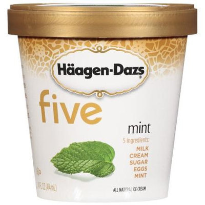 Haagen-Dazs Mint Ice Cream