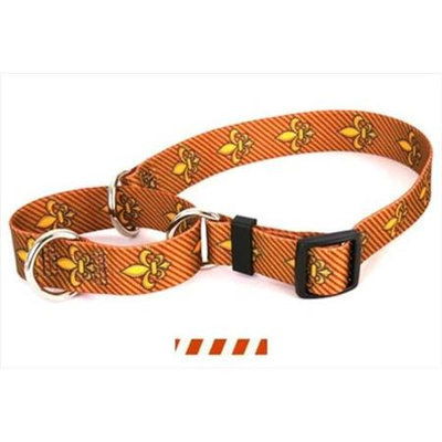 Yellow Dog Design M-TSRUW100XS Team Spirit Rust and White Martingale Collar - Ex