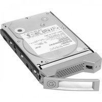 Hewlett Packard G-Technology 0G01910 2TB Internal Hard Drive