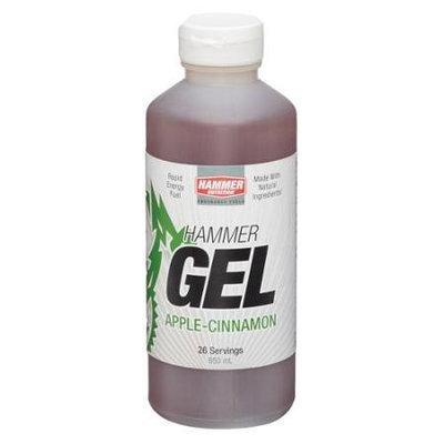 Hammer Nutrition Hammer Gel 26-Serving Jugs - Apple Cinnamon