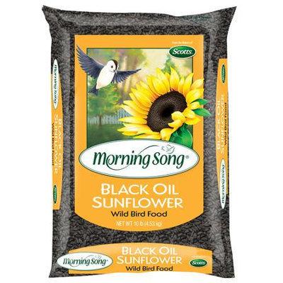 PETCO Black Oil Sunflower Seed