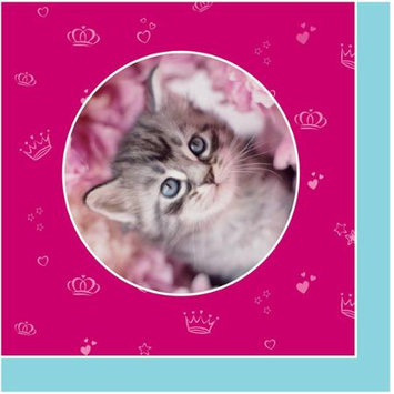 Birthdayexpress rachaelhale Glamour Cats Napkins (16)