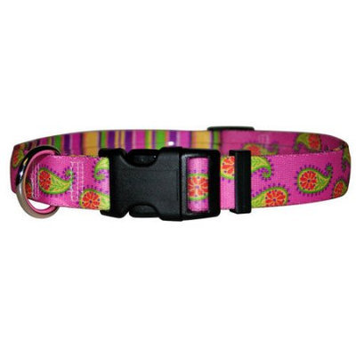 Yellow Dog Design REP102M Burgundy Paisley Standard Collar - Medium