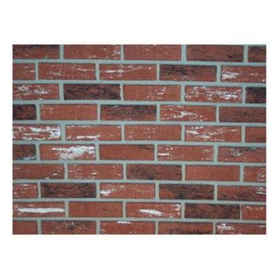 Z-Brick Inca Facing Brick