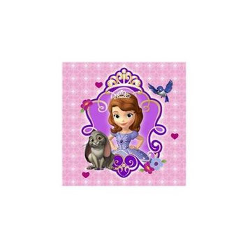 Hallmark 230444 Disney Junior Sofia the First Beverage Napkins