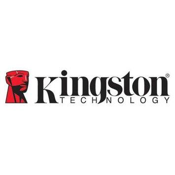 Kingston IKS250E/16GB 16GB Entrpr S250 Usb2.0 Fd Onl
