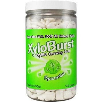 Xyloburst XYB153 500ct Spearmint Gum Jar 26.45 oz