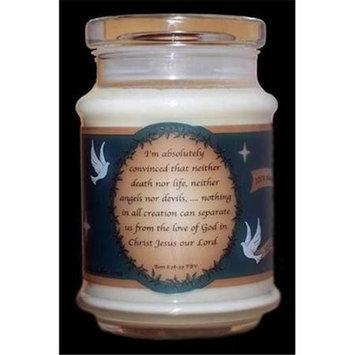 The Vine Candles 09407X Candle Jar Eucalyptus Mint Soy ROM 8 38 39 12 Oz