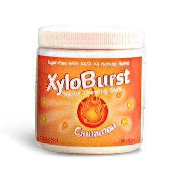 Xyloburst XYB023 100ct Cinnamon Gum Jar 5.29 oz